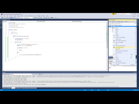 The basics of how to debug in Visual Studio