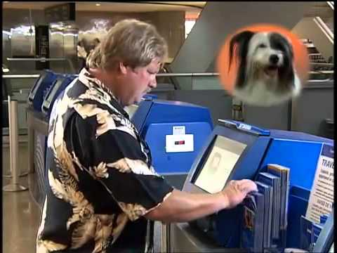 PetFly - United Airlines PetSafe