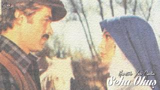 Seha Okuş - Hasretinle Yandı Gönlüm (1972) | Yeşilçam Müzikleri