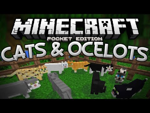 OCELOTS & CATS in MCPE!!! - Tamable Ocelot Mod - Minecraft PE (Pocket Edition)