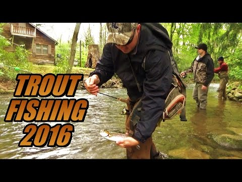Trout Fishing 2016