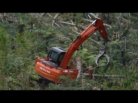 Forest machines. Grappling assisted hauling in New Zealand