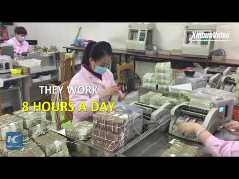 Counting cash like crazy! How to count 700k banknotes a day!
