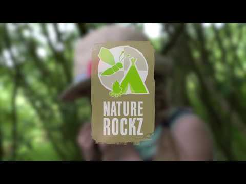 Nature Rockz at Reighton Sands