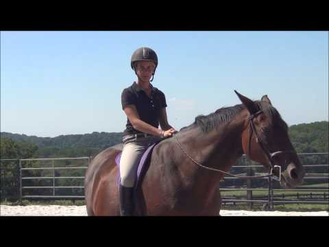Ditch Your Saddle to be a Better Rider