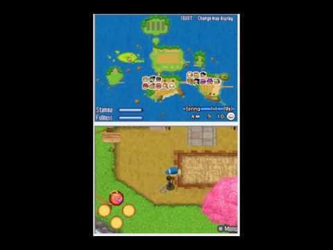 Harvest Moon Sunshine Islands Unlocking Rice Island