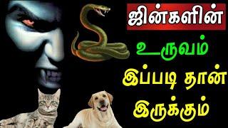 ஜின்களின் உருவம் | Jinn | Jinn In Islam | Jinn In Tamil | Tamil Bayan | A1 Official