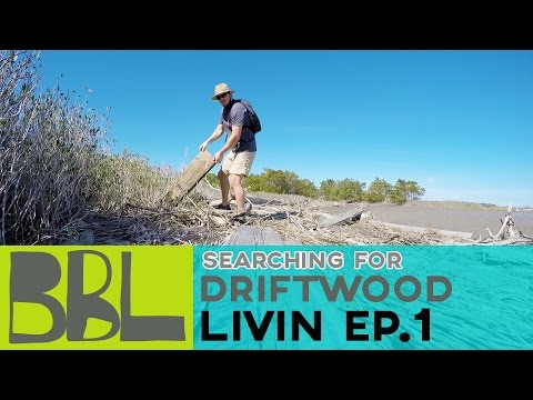 Livin Series: Ep1 Searching for Driftwood
