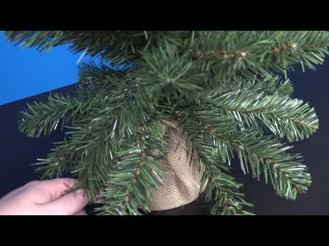 How to shape your Christmas tree