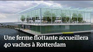 La première ferme flottante s'installe à Rotterdam