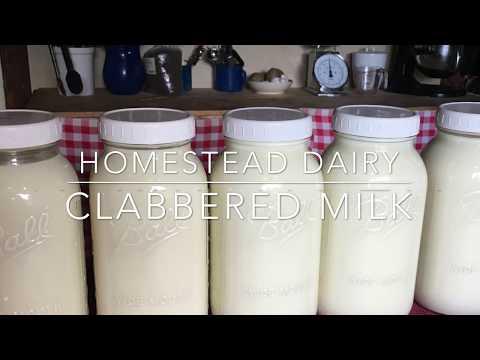 Homestead Dairy - Clabbered Milk