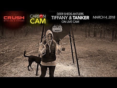 The Crush Live Deer Cam | Tiffany Lakosky Finds Whitetail Sheds on Live Camera