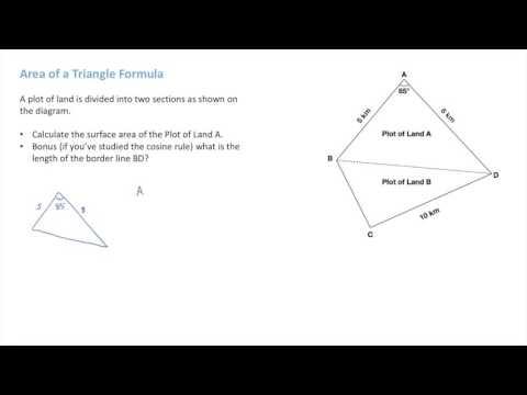 IB Math Studies - Area of Triangle Formula - Exam Question