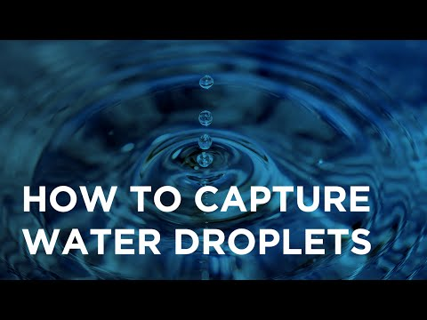 Water Droplets: Creative Photography Challenge Episode #4