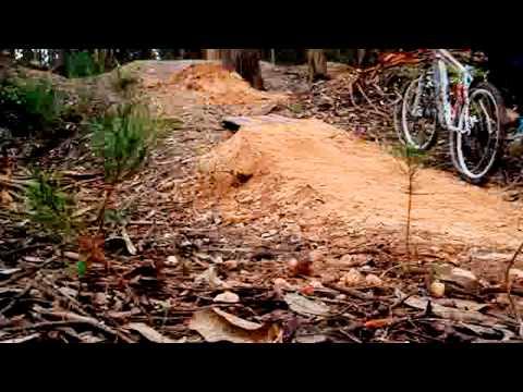 Beginning for mercy - Bike Jumps