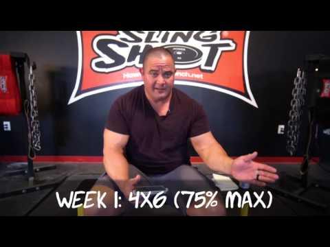 Stronger In 30 Days Bench Press Program by Mark Bell