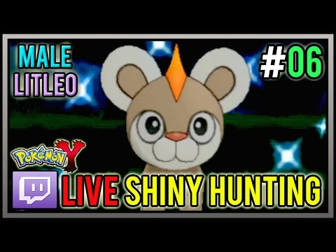 [Live] Shiny MALE Litleo at 40 Chain PokeRadar | Live Shiny Hunt #06 | Pokemon X and Y