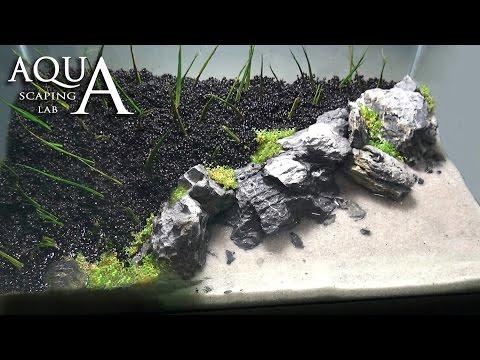 Aquascaping Lab - Tutorial Iwagumi Aquarium