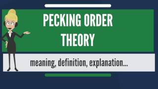 What is PECKING ORDER THEORY? What does PECKING ORDER THEORY mean? PECKING ORDER THEORY meaning