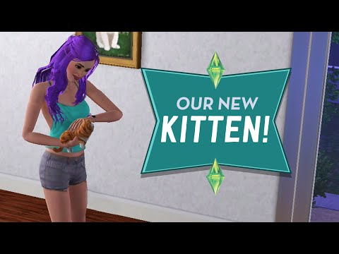 OUR NEW KITTEN - Sims 3 Ever After Ep.41