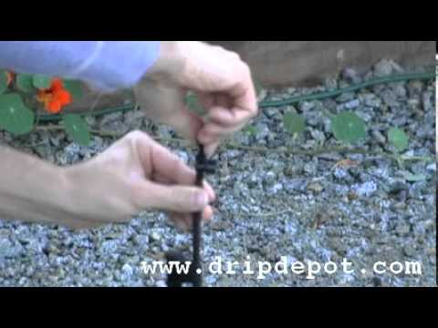 How to use a mirco-sprinkler in a drip irrigation system