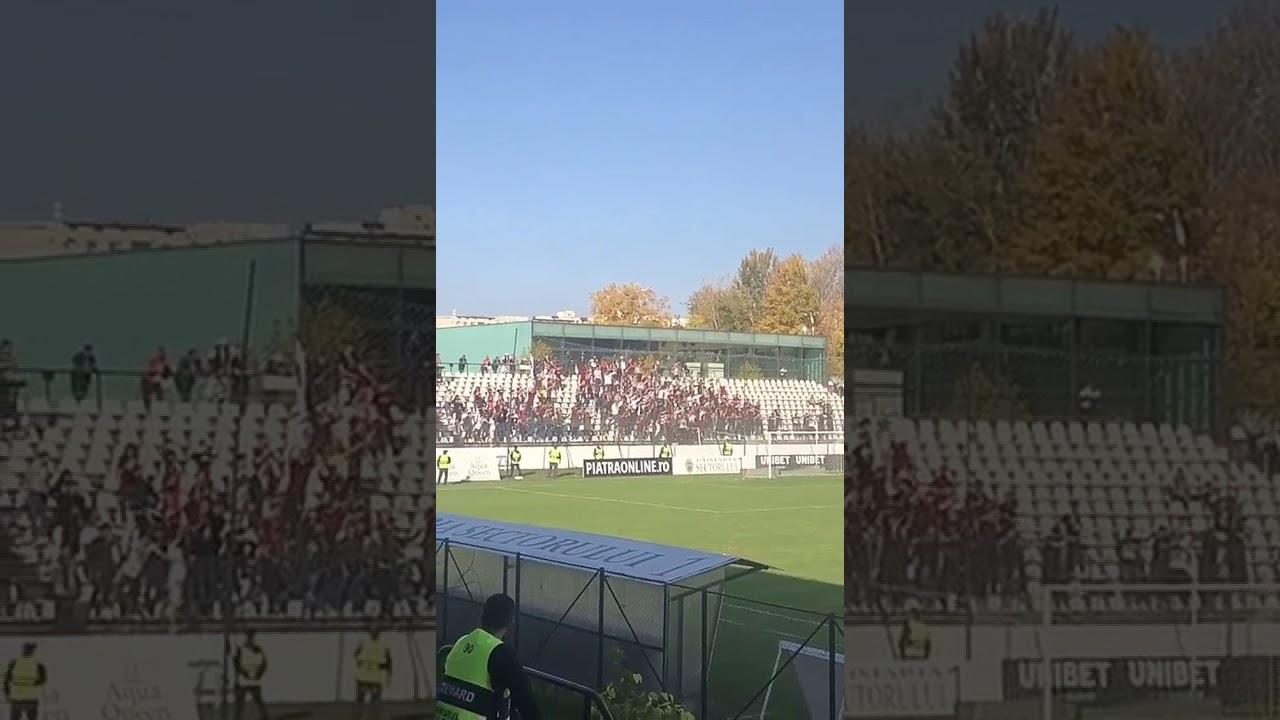 Cainii chemati la bataie dupa meciul Rapid-U Cluj
