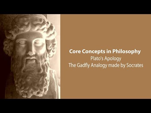 The Gadfly Analogy made by Socrates in Plato's Apology - Philosophy Core Concepts
