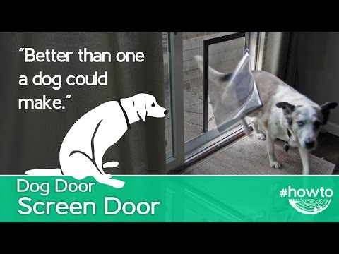 How to Make a Screen Door Doggy Door
