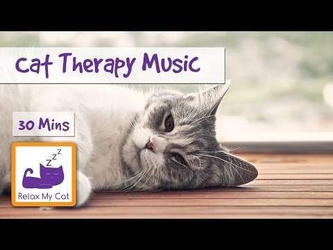 Cat Therapy Music. The Perfect Music for Poorly, Nervous or Stressed Cats 🐱 #STRESS12