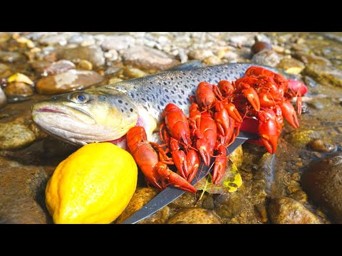 Xxx Mp4 Catch N 39 Cook BROWN TROUT And River CRAWFISH 3gp Sex
