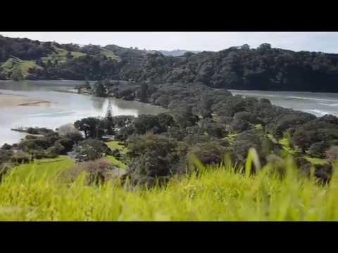 A walk in Wenderholm Regional Park, Auckland, New Zealand