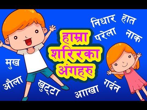 हाम्रा शरीरका अङ्गहरु | Our Body Parts | Learning Nepali Language
