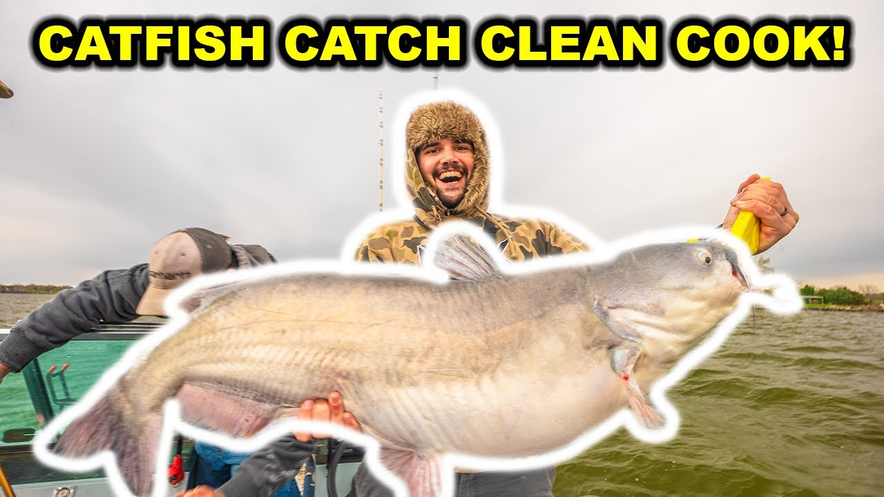 Catching GIANT CATFISH with CUTBAIT!!! (Catch Clean Cook)