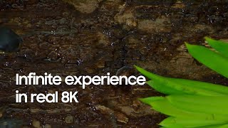 QLED 8K: Infinite experience in real 8K   Samsung