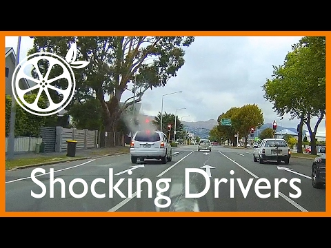 Shocking Drivers - South Island, New Zealand