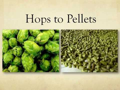 Hops Pelletizing for Small Scale Hops Farms