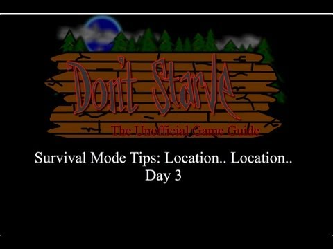 Don't Starve Survival Guide: Day 3 First Camp