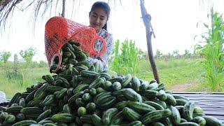 Traditional Fermented Cucumber Recipe / Cucumber Recipe / Cooking With Sreypov.