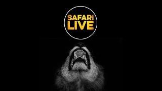 safariLIVE - Sunset Safari - Feb. 23, 2018