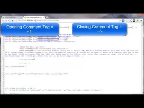 HTML Comments Tag