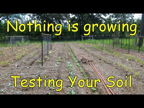 Testing your garden soil for NPK and PH