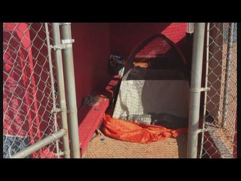 Albuquerque little league facility vandalized by homeless