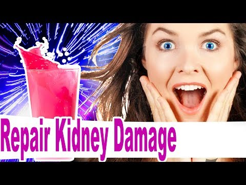 How to Repair Kidney Damage - Home Remedies Proven to Work