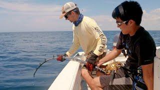 Bass Fishermen vs Goliath Groupers - ft. 1Rod1ReelFishing & LunkersTV - 4K