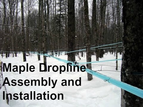 Maple Dropline Assembly and Installation