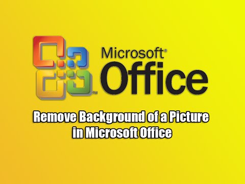 Remove Background of a Picture in Microsoft Office