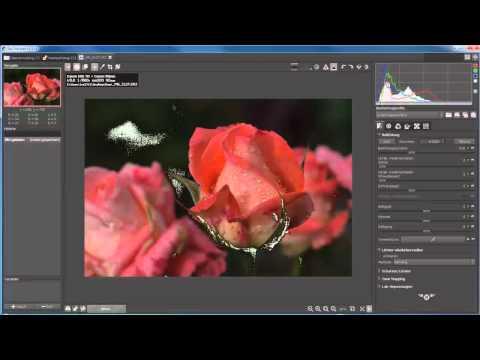 186 RAW-Therapee - RAW-Konverter für GIMP 2.8