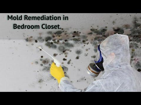Bedroom closet mold remediation