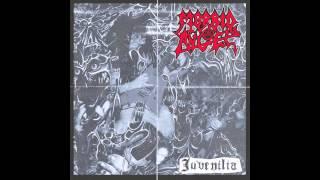 Morbid Angel - Maze Of Torment (live) (official Audio)