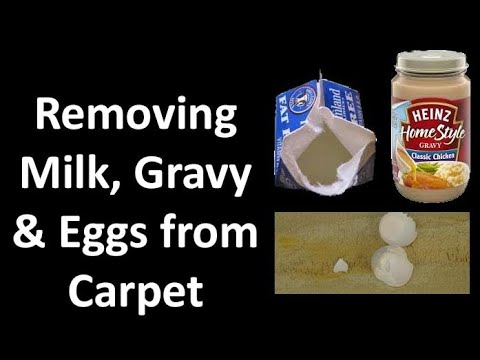 How to Remove Milk, Eggs, Cooking Grease Stains on Carpet